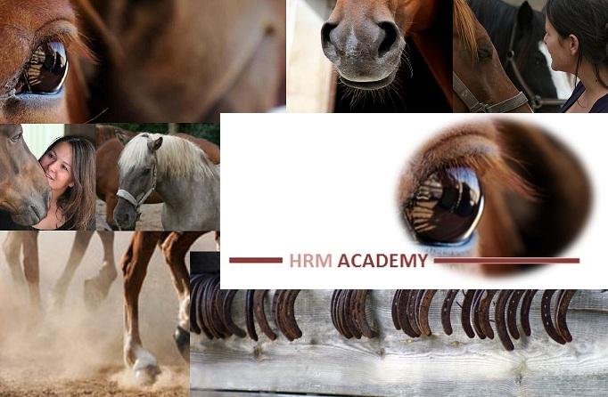 HRM Academy